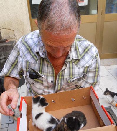 gattini orfani 8mar2012
